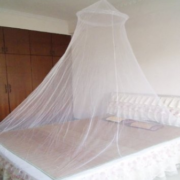Dosel mosquitos1
